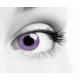 Mystery Violet